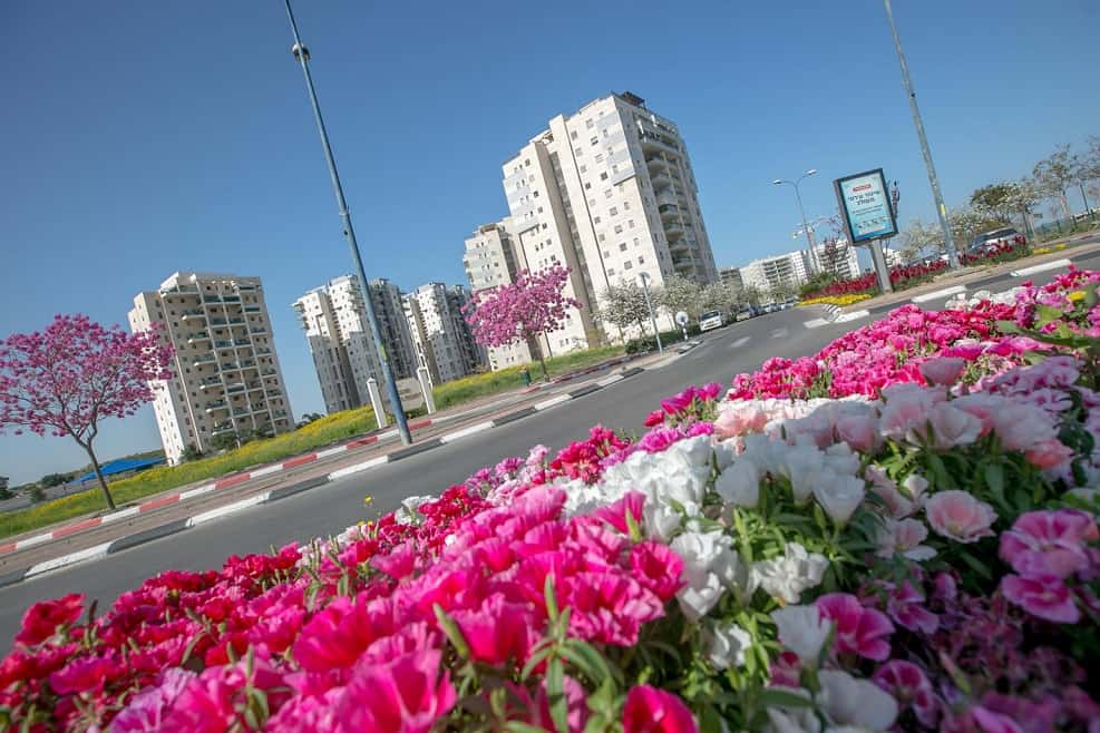 שכונות חדשות בעיר