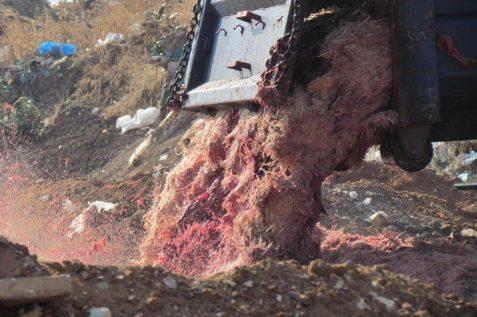 השלכה פיראטית של פסולת פסדים וחלקי עופות באור יהודה. צילום: המשטרה הירוקה, המשרד להגנת הסביבה.