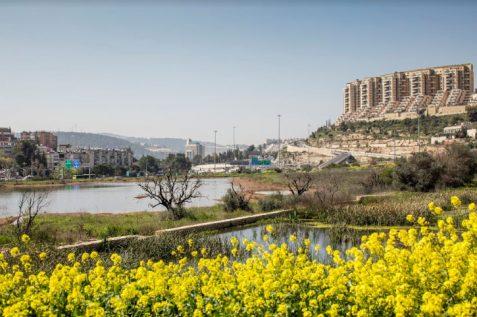 פארק הצבאים בירושלים // תכנון: רחל וינר // צילום: עמית גירון